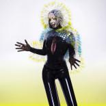 Björk-Vulnicura_cover